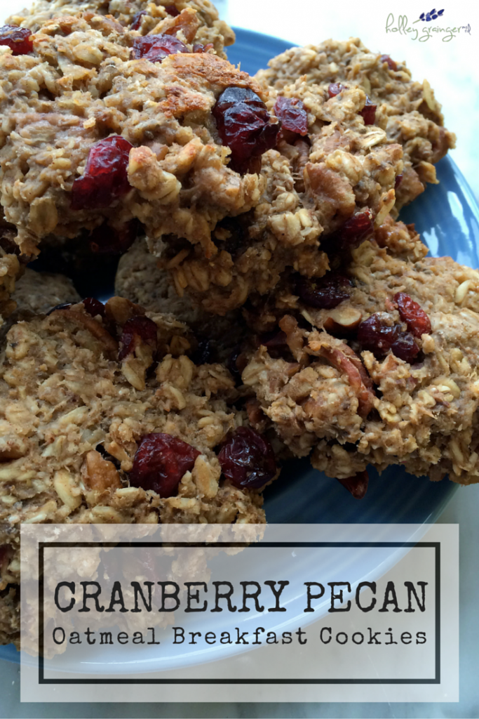 Healthy Oatmeal Cookies In Orange Cranberry Recipe — Dishmaps
