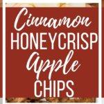 Cinnamon Honeycrisp Apple Chips
