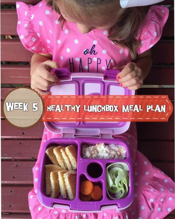 Week 5: Healthy Lunchbox Meal Plan for Your Preschool and Elementary School Children via www.HolleyGrainger.com/blog