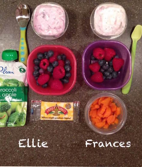 Ellie: fruit and veggie squeezie, cheese, 1/2 cup yogurt, 1/2 cup berries Frances: 1/2 cup yogurt, 1/4 cup berries, 1/2 cup steamed carrots