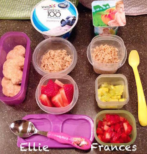 Ellie: Greek yogurt, 1/4 cup brown rice, 3/4 cup strawberries, 3 whole wheat chicken breast nuggets Frances: whole-milk yogurt, 1/4 cup brown rice, 1/4 cup steamed squash, 1/2 cup strawberries