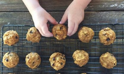 Pumpkin Chocolate Chip Mini Muffins for a yummy fall breakfast, lunch, or snack.