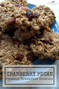Cranberry Pecan Oatmeal Breakfast Cookies combine nutrition and fun for a delicious morning meal or snack.
