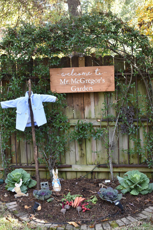 Peter Rabbit Birthday Party Welcome Scene, rustic sign for Mr. MacGregor's Garden, cabbages, and shirt hanging on post