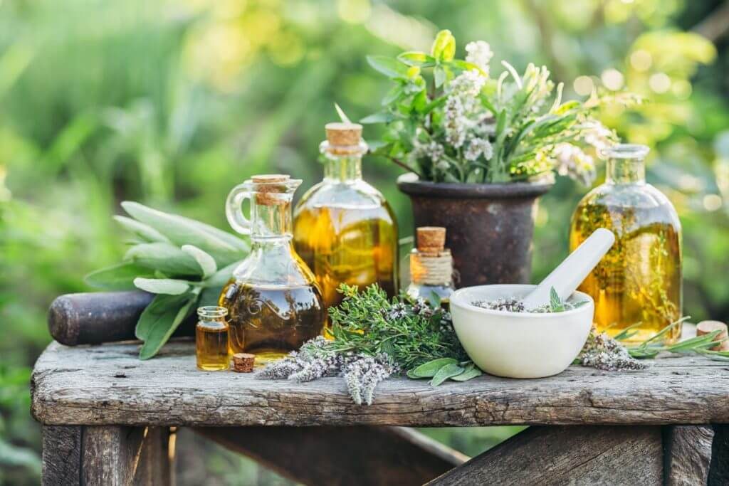 Plant a Pharmacy in Your Backyard, Medicinal table with herbs and oils