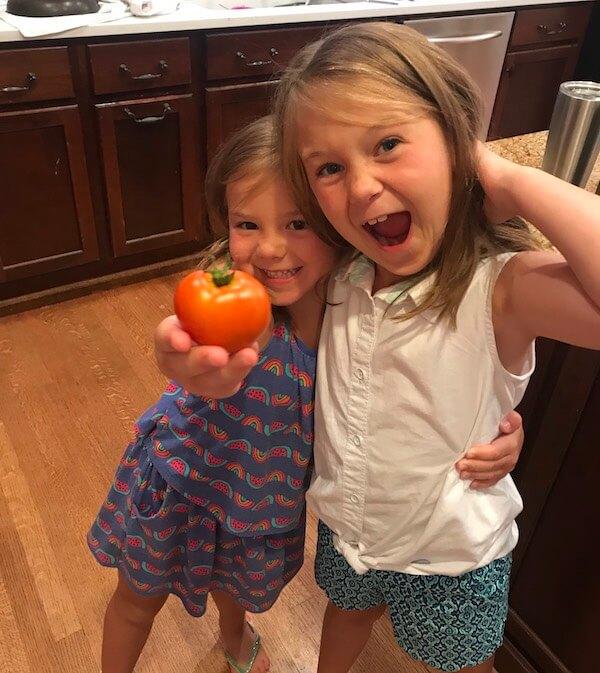 Ellie and Frances garden tomato