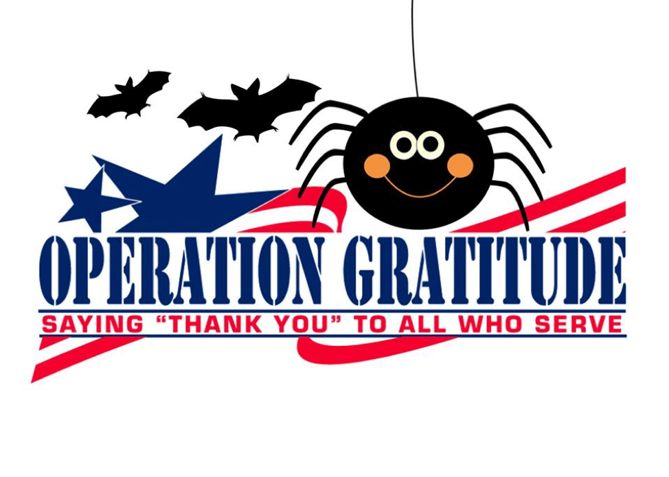 Operation Gratitude - Leftover Halloween Candy donation